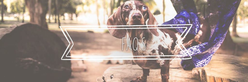 Do you have a question? why not check out our FAQ Section on Longdog Store